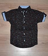 """Рубашка для мальчика с коротким рукавом 6-11 лет, """"Lisami"""" Турция"""