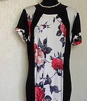 Платья  больших размеров 52-54рр.Хелли