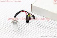 Лампа БИ-XENON H6 (12V 50W DC AMP) 5000K, шт