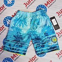 Двухсторонние детские летние шорты для мальчика в пальмы оптом, фото 1