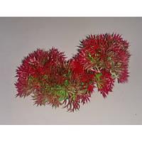 Растение пластиковое 15-20 см Lang № 88171