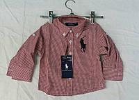 """Детская рубашка для мальчика """"Polo"""""""