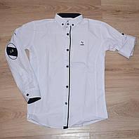 """Белая рубашка для мальчика 10-15 лет, """"Lisami"""" Турция"""