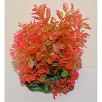 Искуственное аквариумное растение 15-20 см Lang № 22156