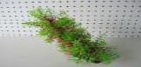 Аквариумное растение пластиковое Lang № 02021