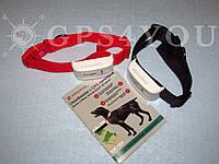 Ошейник с GPS трекером TKSTAR udt101/TK909 + SIM