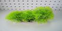 Растение пластиковое Lang № 88173