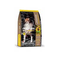 Сухой корм 2,72 кг для собак и щенков Нутрам T23 / Total Grain-Free Turkey, Chiken & Duck Dog NUTRAM