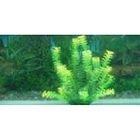 Пластиковое растение для аквариума 32-35 см 104352