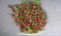 Пластиковое растение для аквариума 60-65 см 037651