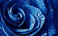 Пигмент жидкий, синий Швейцария