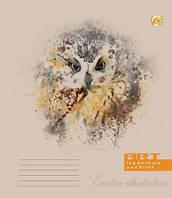 """Тетрадь """"Люкс"""", """"Птахи і тварини"""", клетка, 36 листов, цена за уп., в уп. 20шт(11462)"""