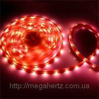 SMD 3528 світлодіодна стрічка 5м Red 300 діодів