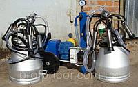 Доильный аппарат на две коровы сухой Стелла АИД-2/2, доильные установки в Украине