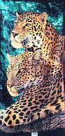 Пляжное полотенце Два леопарда