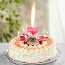 Свічки для торта. Музична. З феєрверком
