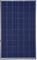 Солнечная панель 270 Вт Trina Solar TSM-PD05.08 270 W (поликристалл)