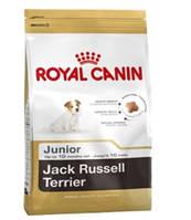 Royal Canin (Роял Канин) корм для щенков ДЖЕК-РАССЕЛ-ТЕРЬЕР JACK RUSSEL JUNIOR в возрасте до 10 месяцев 0,5 кг