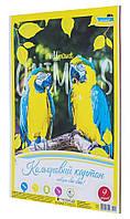 Картон кольоровий   А4 9 листів  Поділля  дикі папуги