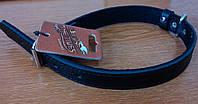 Ошейник кожаный на подкладе Before 1110 (Бефор) 43-52 см/25 мм черный
