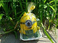 Травянчик Миньен одноглазый, фото 1