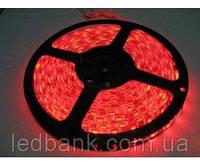 Светодиодная лента 2835 60 LED/m IP20 Красная Standart, фото 1