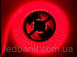 Светодиодная лента SMD 3528 120LED/мт IP20 красная