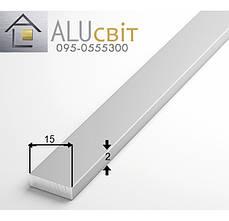Полоса (шина) алюминиевая 15х2  анодированная серебро