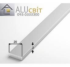Полоса (шина) алюминиевая 20х2 анодированная серебро