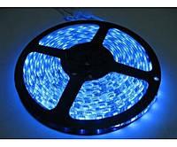 Светодиодная лента 2835 60 led IP20 Синяя Standart, фото 1