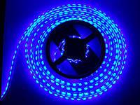Светодиодная лента SMD 3528 120 LED/m IP20 синяя