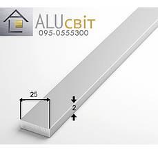 Полоса (шина) алюминиевая 25х2  анодированная серебро