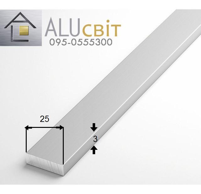 Полоса (шина) алюминиевая 25х3  анодированная серебро