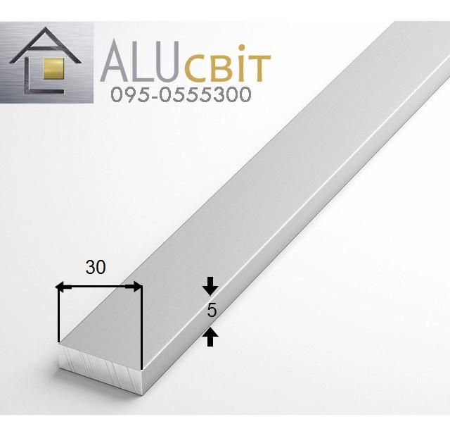 Полоса (шина) алюминиевая 30х5  анодированная серебро