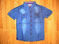 Рубашки джинсовые на мальчика оптом, Nature 8-16 рр