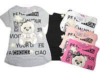 Комплект-двойка для девочки, GLASS BEAR, размеры 122,128, арт.2185