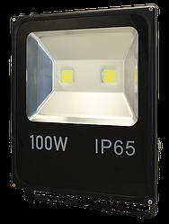 Прожектор LED Work's FL100 (100W)