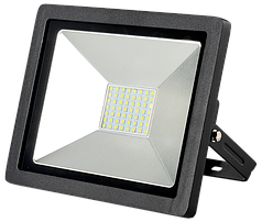 Прожектор LED Work's FL30SMD (30W)