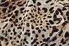 Ткань Шифон леопардовый принт