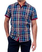 Мужская рубашка клетка, батал W.A.S.P