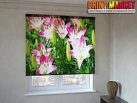 Рулонные шторы с фотопечатью цветы в траве