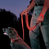 Поводок светодиодный Nite Dawg - LED Pet Leash
