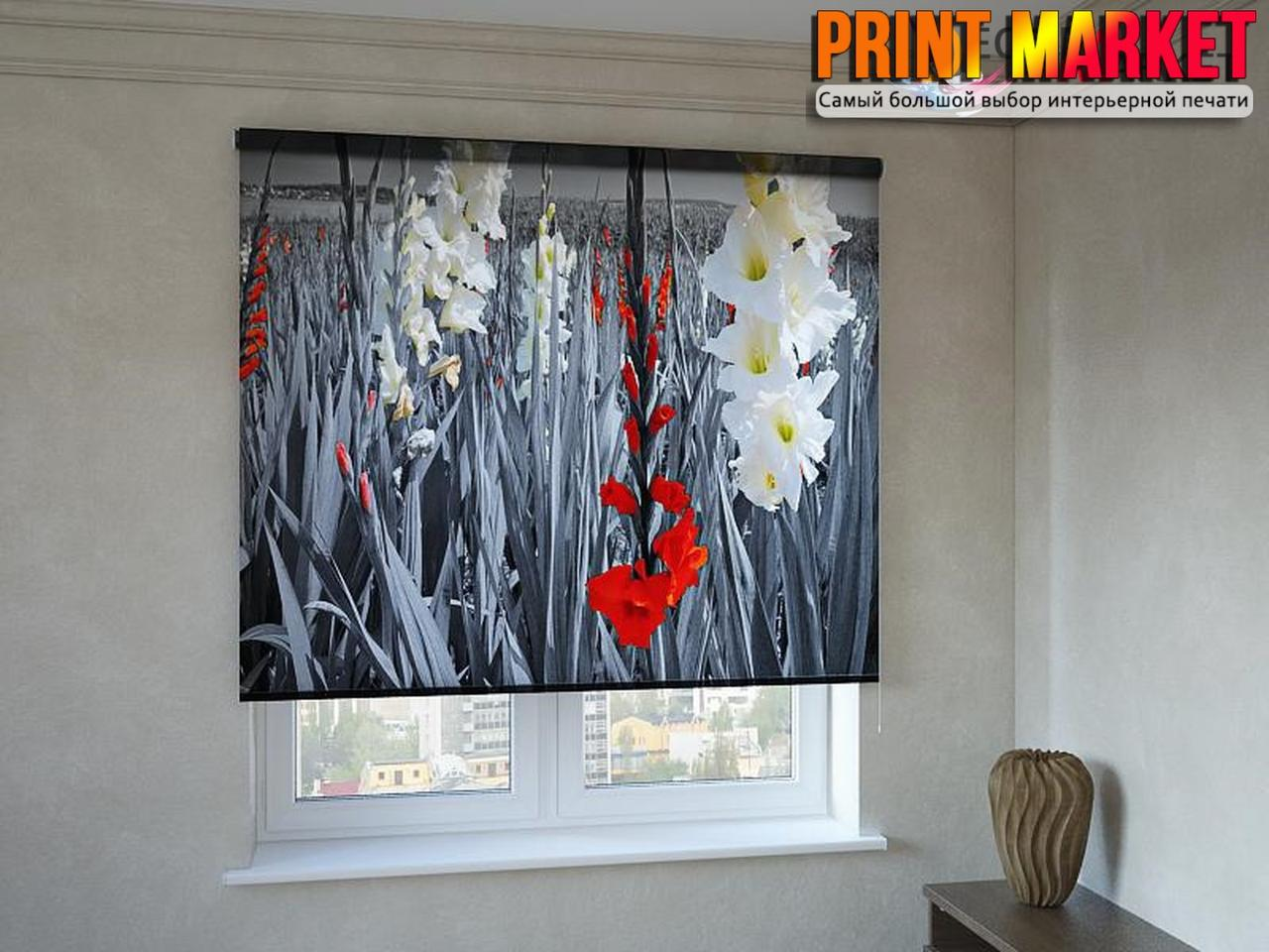 Рулонные шторы с фотопечатью сюжет красок