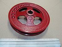 Шкив компрессора МАЗ D=172 (пр-во г.Паневежис) 500-3509130-12