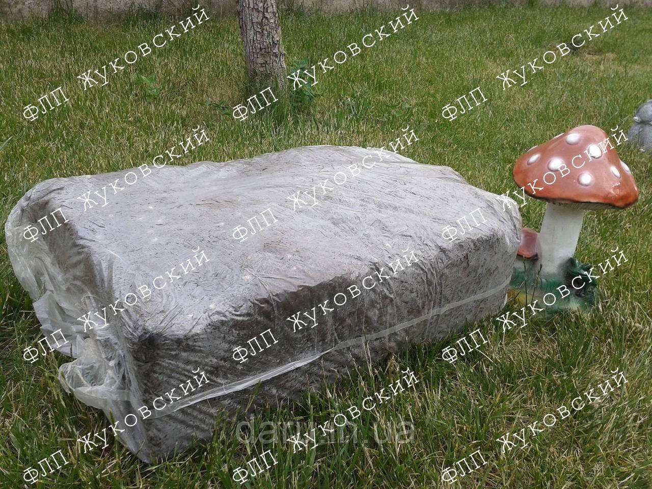 Засеянный грибной блок белого шампиньона Стандарт ОПТ
