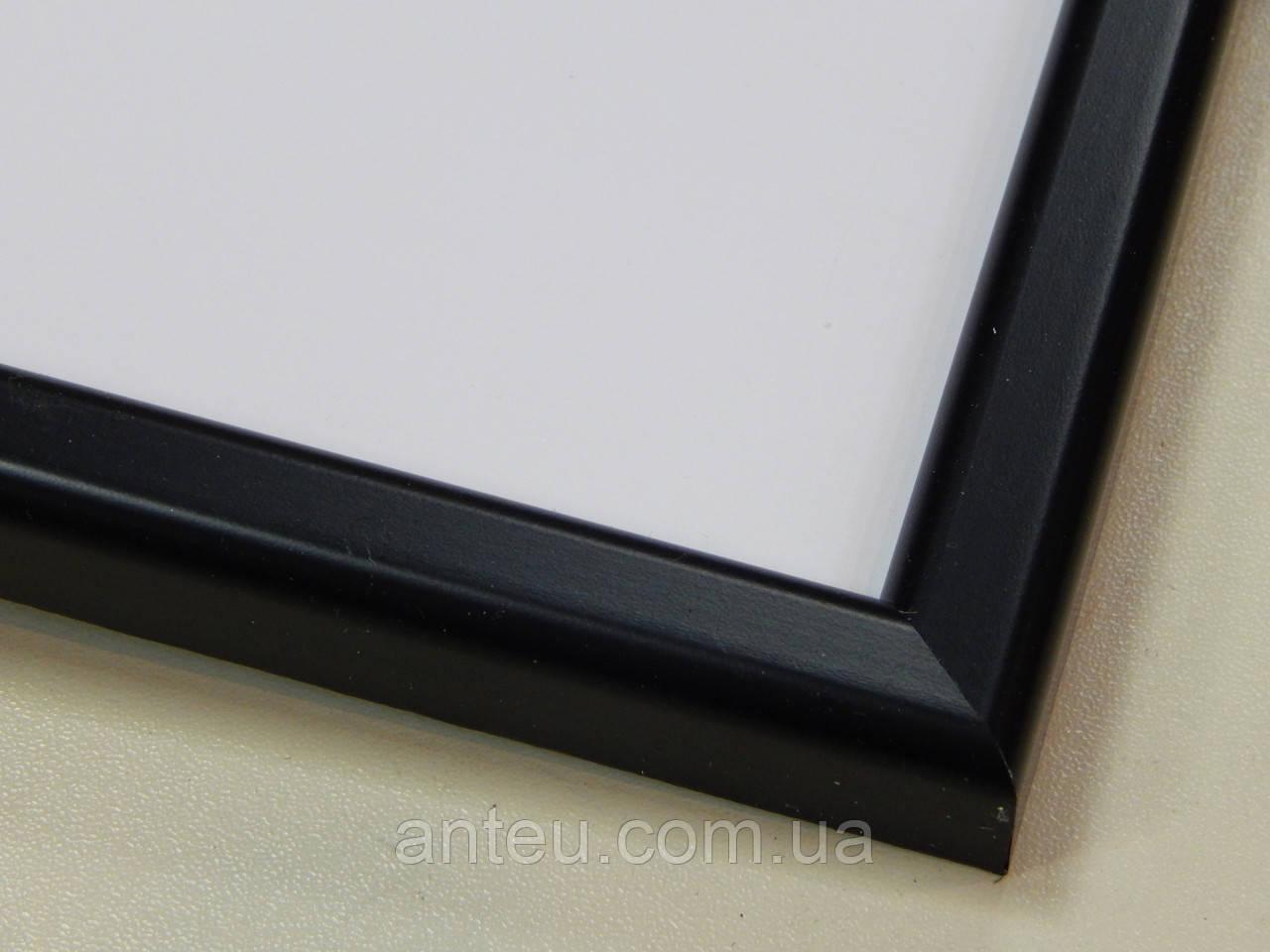 Рамка А4 (297х210).Рамка пластиковая 14 мм.Черный матовый.