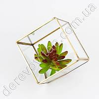 Стеклянная ваза для флорариума, куб, 15.5 см