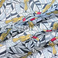 Хлопковая ткань Туканы, фото 1