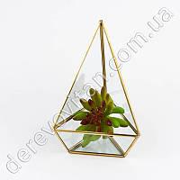 Стеклянная ваза для флорариума, треугольник, 21.5 см
