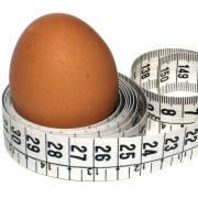 Альбумин (сухой белок куриного яйца) 100г